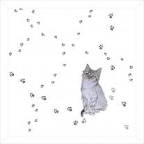 Kocyk letni - Otulacz Kot w butach, 120x120 cm Blanket Story